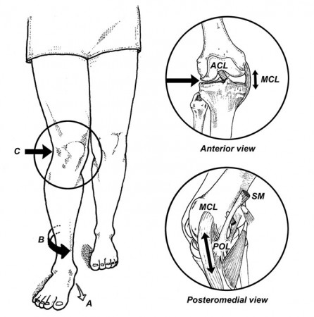 7pronation-Fig.-5-was-4.27
