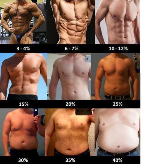 gå ner i fettprocent